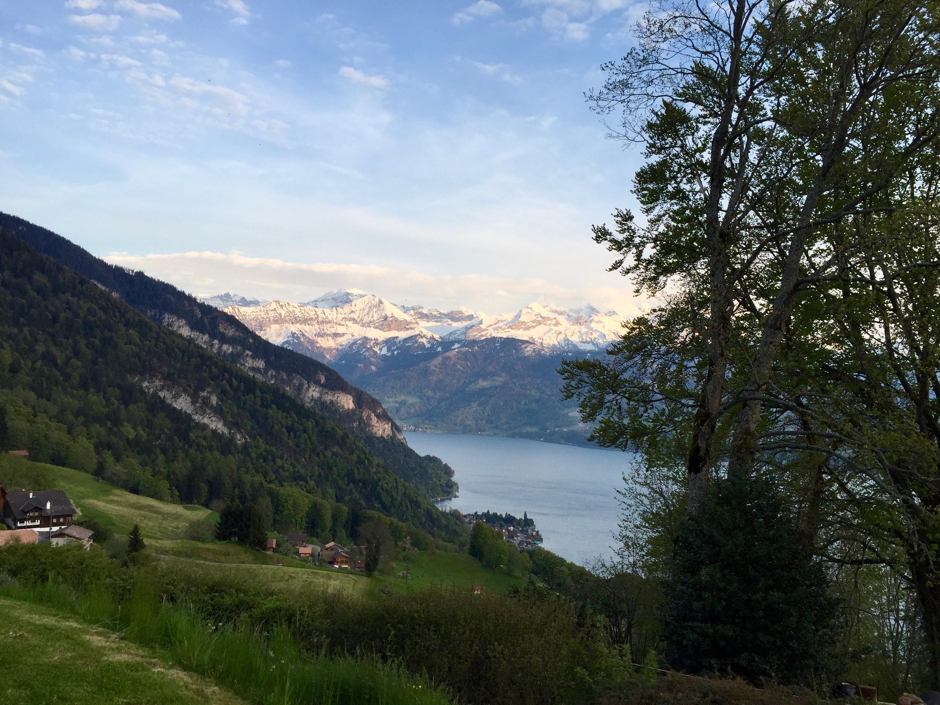 Blick gen Süden auf den See mit verschneiten Bergen