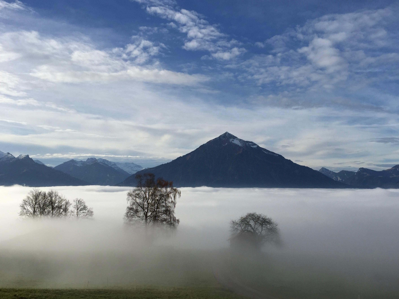 Aussicht mit Nebelmeer 1